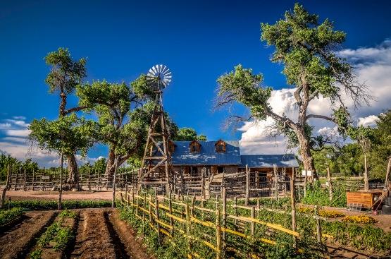 NM Farm