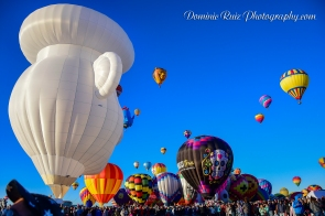 2017 Balloon Fiesta 10-14-17-82