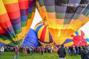 2017 Balloon Fiesta-Sandia Crest-55